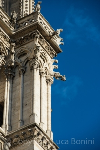 Notredame (3)